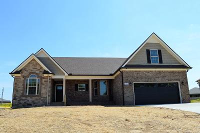 Marshall County Single Family Home For Sale: 5223 McKinnley Dr