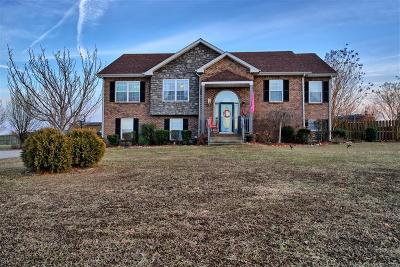 Clarksville Single Family Home For Sale: 3173 Twelve Oaks Blvd