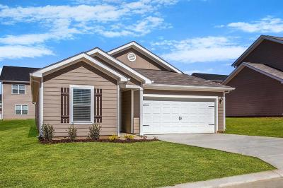 Columbia  Single Family Home For Sale: 2306 Bee Hive Drive