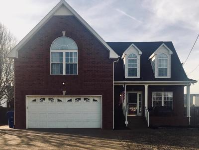 Robertson County Single Family Home For Sale: 6011 Indian Ridge Boulevard