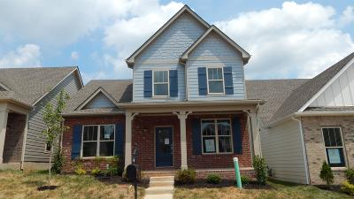 Nolensville Single Family Home For Sale: 4067 Liberton Way