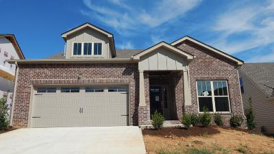 Nolensville Single Family Home For Sale: 4053 Liberton Way