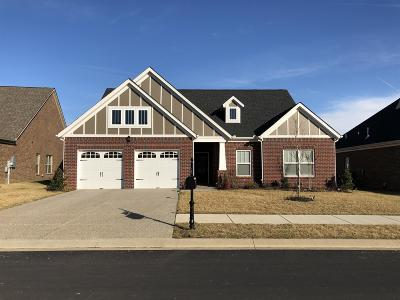 Stonebridge, Stonebridge Ph 1, 2, 3, Stonebridge Ph 11, Stonebridge Ph 17 Single Family Home For Sale: 1028 Waterstone Dr