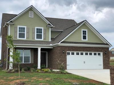 Murfreesboro TN Single Family Home Active - Showing: $324,442