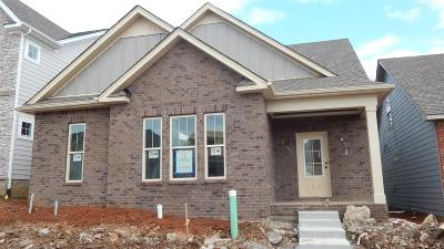 Nolensville Single Family Home For Sale: 4065 Liberton Way