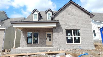 Nolensville Single Family Home For Sale: 4044 Liberton Way