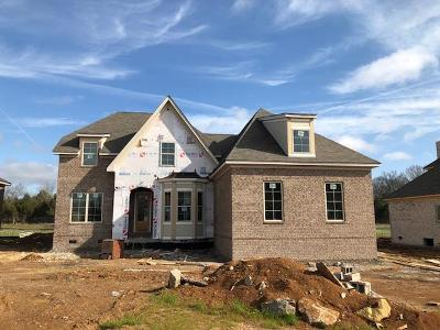 Smyrna Single Family Home For Sale: 7116 Springwater