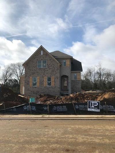 Smyrna Single Family Home For Sale: 7113 Springwater Street
