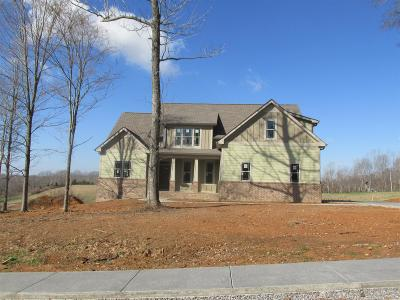 Clarksville Single Family Home For Sale: 320 Brigg Dr