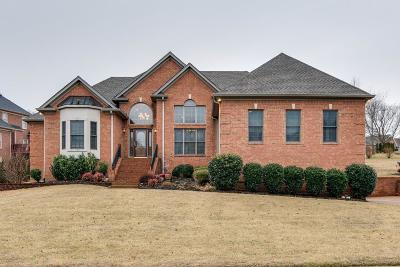 Old Hickory Single Family Home For Sale: 1157 Cleveland Hall Blvd
