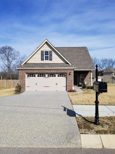 Sumner County Single Family Home For Sale: 500 Ryan Ave