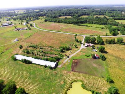Bedford County Single Family Home For Sale: 2075 Unionville Deason Rd