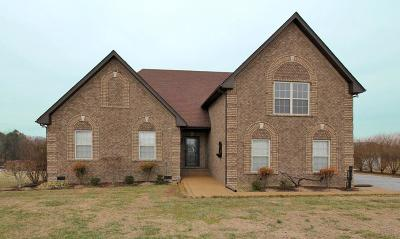 Robertson County Single Family Home For Sale: 4784 Somerville Rd