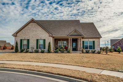 Spring Hill Single Family Home For Sale: 6011 San Giovanni Ct