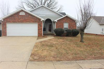 Christian County Single Family Home For Sale: 403 S Sheridan Drive