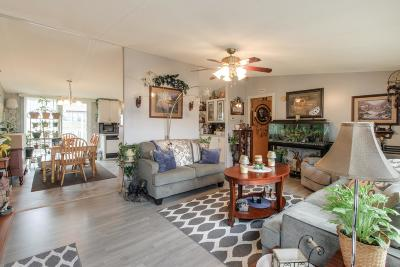 Marshall County Single Family Home For Sale: 3600 Wynwood Dr