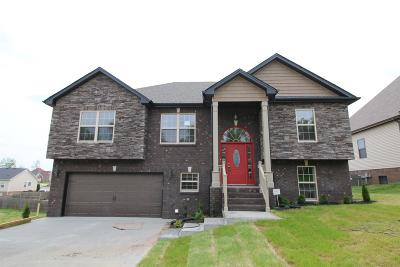 Clarksville Single Family Home Under Contract - Showing: 641 Fields Of Northmeade