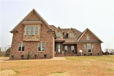 Lebanon Single Family Home For Sale: 139 Springfield Drive #51-C
