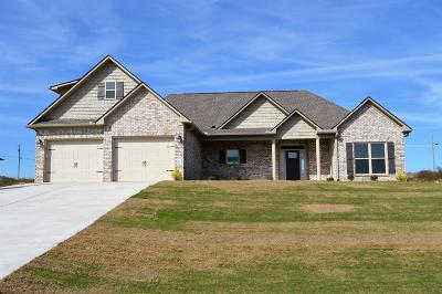 Marshall County Single Family Home For Sale: 2602 Etna Dr