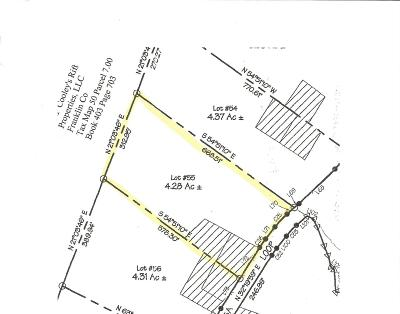 Residential Lots & Land For Sale: 55 Lake Louisa Road