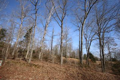 Christian County, Ky, Todd County, Ky, Montgomery County Residential Lots & Land For Sale: 1625 Southside Rd
