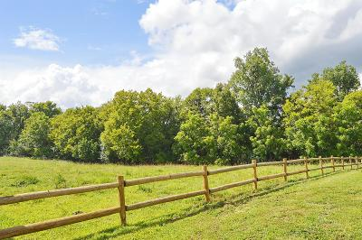 Marshall County Single Family Home For Sale: 211 Lynnville Rd