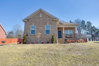Mount Juliet Single Family Home For Sale: 1064 Oakhall Dr