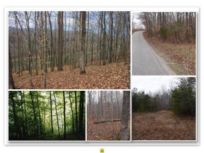 Dekalb County Residential Lots & Land For Sale: 63 .81 Ac. Wright Bend Road