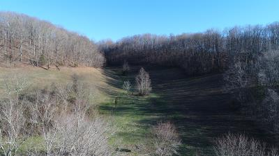 Beechgrove TN Residential Lots & Land For Sale: $89,900
