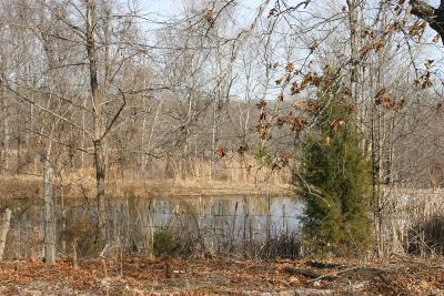 Christian County, Ky, Todd County, Ky, Montgomery County Residential Lots & Land For Sale: 4231 Lylewood Rd