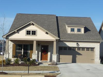 Sumner County Single Family Home For Sale: 72 Nokes Dr