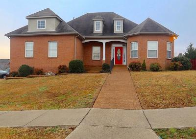 Hendersonville Single Family Home For Sale: 104 Holmes Dr