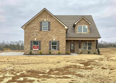 Bedford County Single Family Home For Sale: 700 Happy Valley Rd