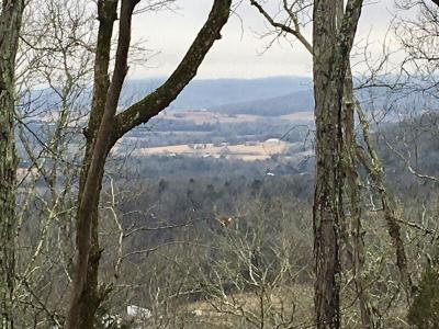 Liberty TN Residential Lots & Land Sold: $60,000