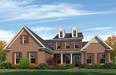 Nolensville Single Family Home For Sale: 784 Alameda Ave - #36