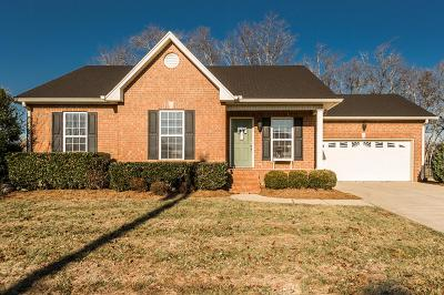 Sumner County Single Family Home For Sale: 250 Walbrook Dr