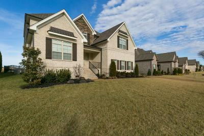 Spring Hill Single Family Home For Sale: 8016 Puddleduck Ln