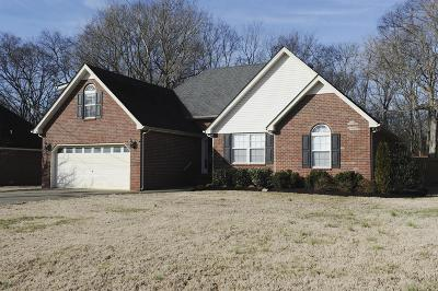 Smyrna Single Family Home Under Contract - Showing: 722 Williamsburg Dr