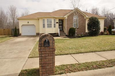 Mount Juliet Single Family Home For Sale: 524 Summit Way