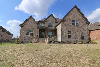 Mount Juliet Single Family Home For Sale: 917 Harrisburg Lane