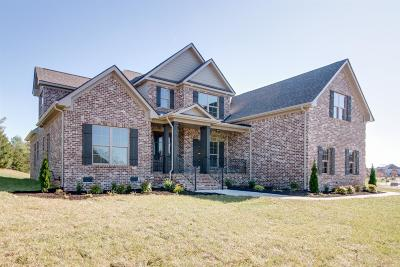 Murfreesboro Single Family Home For Sale: 3336 Vintage Grove Pkwy
