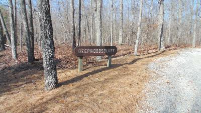 Residential Lots & Land Sold: 4 Deepwoods Buff