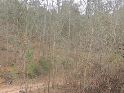 Cumberland Furnace Residential Lots & Land For Sale: W Of Hembree Rd