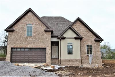 Wilson County Single Family Home For Sale: 33 Hartmann Crossing Dr #33