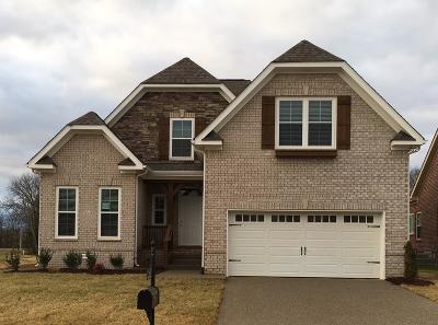 Spring Hill Single Family Home For Sale: 2002 Virgle Circle - Lot 698