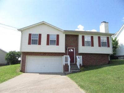 Montgomery County Single Family Home Under Contract - Showing: 275 Audrea Ln