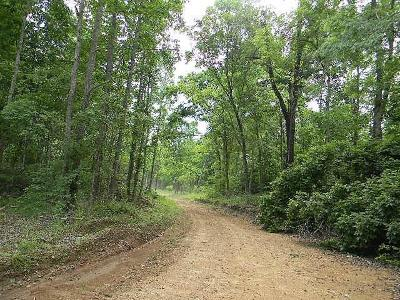 Erin Residential Lots & Land For Sale: Hankins Hollow Ln