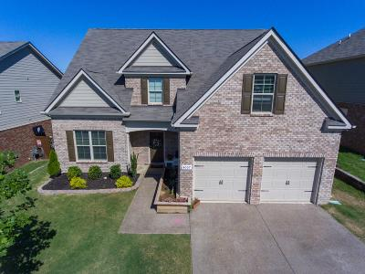 Smyrna Single Family Home For Sale: 4007 Paperbirch Dr