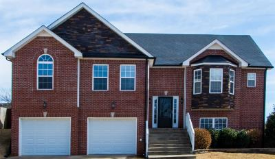 Clarksville Single Family Home For Sale: 725 W Accipiter Cir