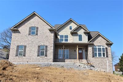 Lebanon Single Family Home For Sale: 413 Amarillo Dr